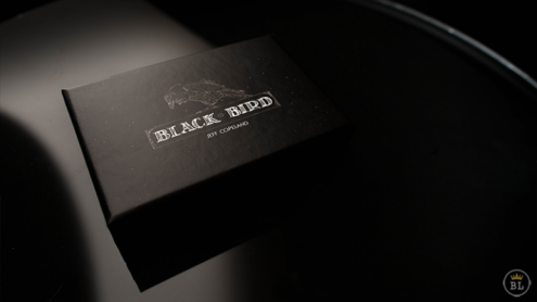 Blackbird (Gimmick and Online Instructions) by Jeff Copeland - Trick