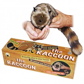 Procione Junior Robbie Raccoon- Animali a molla