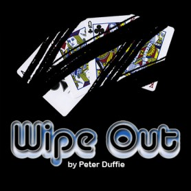 Wipe Out by Peter Duffy