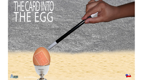 THE CARD INTO THE EGG (Gimmicks and Online Instructions) by Alan Alfredo Marchese - Trick