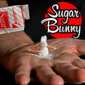 SUGAR BUNNY by Steve Fearson - il Coniglietto di Zucchero