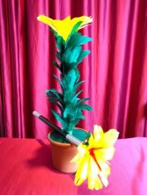 Enchanted Flower Kids Show