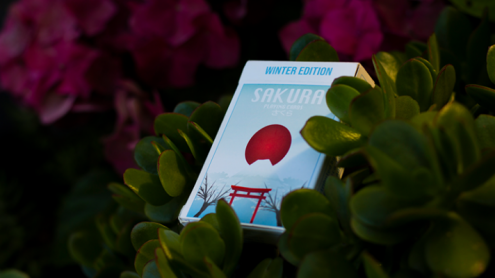Sakura V2 Playing Cards