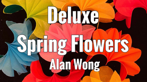 Deluxe Spring Flowers by Alan Wong - Trick