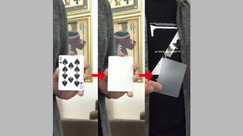 MISSING CARD by JL Magic - Trick