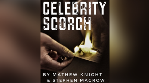 Celebrity Scorch (Downey Jr & Beckham) by Mathew Knight and Stephen Macrow