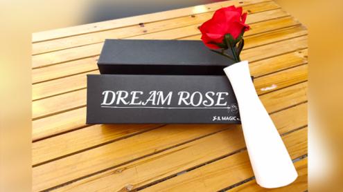 Dream Rose by JL Magic - Trick