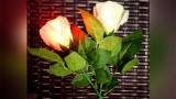 Rose Light set RED by JL Magic - Trick